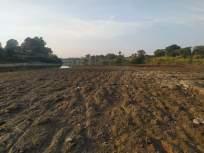 कृष्णा नदी कोरडी ठणठणीत, शेतीसमोर अडचणी