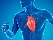हृदय निरोगी ठेवण्यासाठी आहारात 'या' पदार्थांचा समावेश नक्की करा