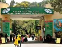 १ ऑक्टोबरपासून नॅशनल पार्क मॉर्निंग वॉकसाठी खुले होणार ? - Marathi News | National Park to open for Morning Walk from October 1? | Latest mumbai News at Lokmat.com