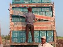 तेलंगवाडीच्या डाळिंबाने बांगलादेशवासीयांना पाडली भुरळ