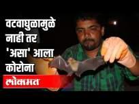 कोरोना विमानातून आला, वटवाघुळामुळे नाही | Coronavirus Spreads from Bats to Humans? Pune News - Marathi News | Corona came from the plane, not because of the storm Coronavirus Spreads from Bats to Humans? Pune News | Latest national Videos at Lokmat.com