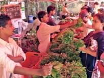 शेतकऱ्यांनी थेट शहरात येऊन भाजीपाला विकावा; तुकाराम मुंढे यांचे आवाहन - Marathi News | Farmers should come directly to the city and sell vegetables; Tukaram Mundhe's appeal | Latest nagpur News at Lokmat.com
