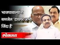 भाजपावाल्यांना समजेल 'टायगर अभी जिंदा हैं' | Jayant Patil On Bhartiya Janata Party | Eknath Khadse - Marathi News | BJP will understand 'Tiger is still alive' | Jayant Patil On Bhartiya Janata Party | Eknath Khadse | Latest politics Videos at Lokmat.com