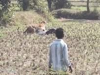 ...अन् 'ते' मृत्यूच्या जबड्यातून परतले; गावकऱ्यांमुळे तिघांचे प्राण वाचले