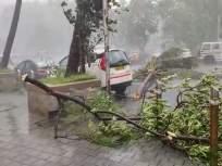 Rain Live Updates: मुंबईसह उपनगरात वादळी वाऱ्यासह मुसळधार पाऊस; झाडं कोलमडली, प्रचंड नुकसान - Marathi News | Rain Live Updates: Heavy rains with strong winds in Mumbai, Thane, Navi Mumbai, trees collapsed | Latest maharashtra News at Lokmat.com