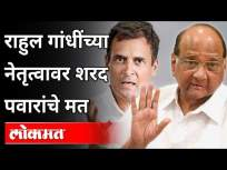 राहुल गांधींच्या नेतृत्वावर शरद पवारांचे मत | Sharad Pawar On Rahul Gandhi | Maharashtra News - Marathi News | Sharad Pawar's opinion on Rahul Gandhi's leadership | Sharad Pawar On Rahul Gandhi | Maharashtra News | Latest maharashtra Videos at Lokmat.com