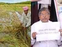 शेतकऱ्यांना नुकसान भरपाई द्या, भाजपचा विधिमंडळ पायरीवर ठिय्या - Marathi News | Compensate the farmers, let the BJP legislature stand on its feet | Latest mumbai Photos at Lokmat.com