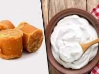 दही आणि गुळ खा; रोगप्रतिकारक शक्ती वाढवा अन् इतरही समस्या दूर ठेवा... - Marathi News | Eat yogurt and jaggery; Boost the immune system and keep other problems away ... | Latest health News at Lokmat.com