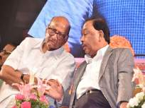 स्थिर सरकारवर शरद पवार बोललेत, पण...; नारायण राणेंचा टोला - Marathi News | Sharad Pawar spoke on stable government, but ...; Narayan Rane speak on president rule hrb | Latest maharashtra News at Lokmat.com