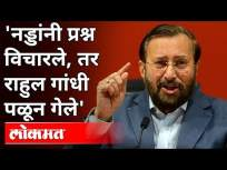 'नड्डांनी प्रश्न विचारले, तर राहुल गांधी पळून गेले' | BJP Prakash Javadekar On Rahul Gandhi | India - Marathi News | 'Nadda asked questions, but Rahul Gandhi ran away' | BJP Prakash Javadekar On Rahul Gandhi | India | Latest national Videos at Lokmat.com
