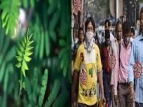 लढ्याला यश! झाडांमधील रासायनिक तत्वाने कोरोना विषाणू नष्ट होणार; भारतीय तज्ज्ञांचा दावा - Marathi News | New study claims phytochemicals in plant extracts can fight coronavirus | Latest health News at Lokmat.com