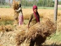 नुकसानग्रस्त शेतकऱ्यांना दिलासा; राज्यपालांकडून आर्थिक मदत जाहीर