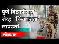 सुरक्षा रक्षकाने वाचवले विषारी सापाचे प्राण | King Cobra Snake in Pune University | Pune News - Marathi News | Security guard rescues poisonous snake | King Cobra Snake in Pune University | Pune News | Latest maharashtra Videos at Lokmat.com