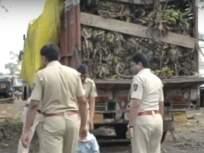 अमरावतीमध्ये केळीच्या ट्रकमधून तब्बल 10 क्विंटल गांजाची वाहतूक