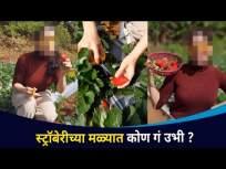 अभिनेत्री प्रिया बापट पोहचली स्ट्रॉबेरीच्या मळ्यात Priya Bapat in Strawberry Farm |Lokmat CNX Filmy - Marathi News | Actress Priya Bapat arrives at Strawberry Farm Priya Bapat in Strawberry Farm | Lokmat CNX Filmy | Latest entertainment Videos at Lokmat.com