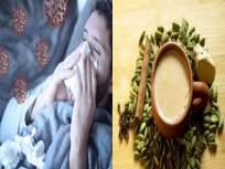 CoronaVirus : कोरोना विषाणूंवर उपचारांसाठी HIV च्या औषधापेक्षा प्रभावी ठरेल चहा; तज्ज्ञांचा खुलासा - Marathi News | Himachal pradesh expert claims kangra tea boost immunity against coronavirus myb | Latest health Photos at Lokmat.com