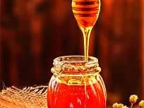 साखरेच्या गोडीचं काम करणा-यामधामुळे पदार्थ होतात खास.. ते कसे?