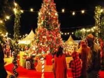 'या' ४ ठिकाणी हा ख्रिसमस इन्जॉय कराल तर आयुष्यभर लक्षातराहील, कमी बजेटमध्ये जास्त मजा....