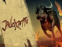 ९३व्या ऑस्कर अवॉर्डसाठी भारताकडून मल्याळम सिनेमा 'जल्लीकट्टू'ला नामांकन, या चित्रपटांना टाकले मागे - Marathi News | India nominates Malayalam film 'Jallikattu' for 93rd Oscar Awards | Latest bollywood News at Lokmat.com