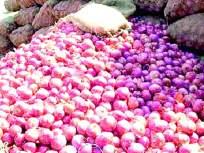 लोणंदला गरवा कांदा ११ हजारी : बाजार समितीत हळवा १० हजार रुपये प्रति क्विंटल