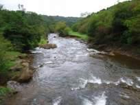 म्हादईच्या पाण्यावर गोव्याचे पाच पाणी प्रकल्प अवलंबून
