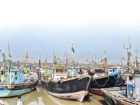 एलईडी, पर्ससीन मासेमारीमुळे पारंपरिक व्यवसाय धोक्यात