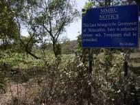 'अडीच हजार झाडांच्या बदल्यात २४ हजार झाडे लावली'