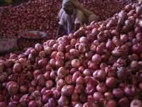 बंदरांवर निर्यातीच्या प्रतीक्षेत असलेल्या 100 कोटींच्या कांद्याचं काय करायचं? - Marathi News   onions worth rs 100 crore at ports after modi government bans export   Latest national News at Lokmat.com