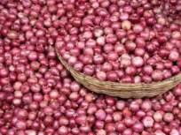 आडत्याने थकविलेले कांदा उत्पादक शेतक-यांचे ४९ लाख अखेर वसूल