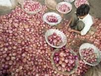 मुंबई बाजार समितीमध्ये सफरचंद, बासमतीपेक्षाही कांदा महाग