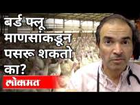 बर्ड फ्लू माणसांकडून पसरू शकतो का? Dr Ravi Godse On Bird Flu | America - Marathi News | Can bird flu be spread by humans? Dr Ravi Godse On Bird Flu | America | Latest maharashtra Videos at Lokmat.com