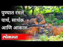 पुण्यात रमले पार्थ, सार्थक आणि आकाश | Rajiv Gandhi Zoological Park Pune | Pune News - Marathi News | Partha, Sarthak and Akash played in Pune Rajiv Gandhi Zoological Park Pune | Pune News | Latest pune Videos at Lokmat.com