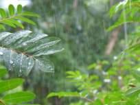 शुक्रवारी राज्यात तुरळक पावसाची शक्यता ; हवामान विभागाचा अंदाज