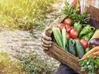 कोरोनात रोगप्रतिकारक शक्ती वाढवण्याचा हा नवा ट्रेण्ड ठरू शकतो घातक - Marathi News | Don't eat raw vegetables; proved dangerous to your health | Latest health News at Lokmat.com