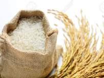 हमीभावामुळे तांदळाच्या दरात दहा टक्क्यांनी वाढ