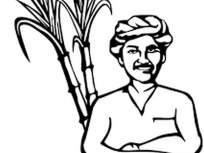 वऱ्हाडातील १३ शेतकऱ्यांना रोटरी कृषी दीपस्तंभ पुरस्कार