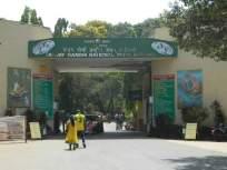 संजय गांधी उद्यानाच्या नावे बनावट वेबसाइट