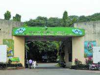 नॅशनल पार्क मॉर्निंग वॉकसाठी खुले होणार - Marathi News   The national park will be open for a morning walk   Latest mumbai News at Lokmat.com