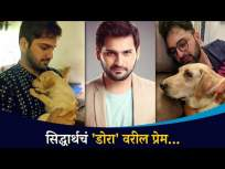 सिद्धार्थ चांदेकरच पेट प्रेम | Siddharth Chandekar Pet Love | Lokmat CNX Filmy - Marathi News | Siddharth Chandekarach Pet Prem | Siddharth Chandekar Pet Love | Lokmat CNX Filmy | Latest entertainment Videos at Lokmat.com