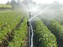 परभणी जिल्ह्यात वर्षभरात ३७७९ हेक्टर जमीन सिंचनाखाली