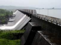 मुंबईकरांची ५०% पाणी चिंता मिटली; तलावांमध्ये जमा झाला ४९ टक्के जलसाठा - Marathi News | 49 per cent storage in lakes which provides water to mumbai | Latest mumbai News at Lokmat.com