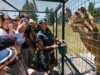 जगातलं सर्वात मोठं प्राणिसंग्रहालय, आतलं दृश्य पाहून थरकाप उडेल!