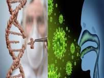 जीन एडिटींग टूलने कोरोनाचा होणार खात्मा; जाणून घ्या 'या' टूलने कसा नष्ट होईल विषाणू - Marathi News | Coronavirus research update gene editing tool this gene editing tool will eliminate corona virus | Latest health News at Lokmat.com