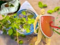 तुळस आणि मधाचा अर्क असलेली मिठाई रोगप्रतिकारकशक्ती वाढवणार; जाणून घ्या खासियत - Marathi News | Covid 19 pandemic west bengal ready to market immunity boosting sandesh sweets | Latest health News at Lokmat.com