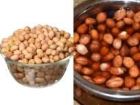 रोज भिजवलेले शेंगदाणे खाल्यानं टळेल 'या' आजारांचा धोका; जाणून घ्या आरोग्यदायी फायदे - Marathi News | Health Tips : health benefits eating soaked peanuts water | Latest food News at Lokmat.com