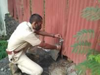 दिंडोशी म्हाडा वसाहतीत बिबट्याचा शोध घेण्यासाठी वनखात्याने लावले कॅमेरे - Marathi News | Cameras installed by the forest department to search for leopards | Latest mumbai News at Lokmat.com