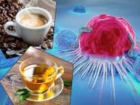 रोज ग्रीन टी, कॉफी प्यायल्याने टळू शकतील 'या' आजारांमुळे होणारे मृत्यू, नव्या रिसर्चमधून दावा - Marathi News | Drinking coffee and green tea daily may lower risk of death due to diabetes says study | Latest health News at Lokmat.com