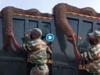 हृदयद्रावक! हत्तीला अखेरचा निरोप देताना जवानाला अश्रू अनावर, पाहा व्हिडीओ - Marathi News | Watch emotional video of ranger who is crying for his elephant death | Latest health News at Lokmat.com