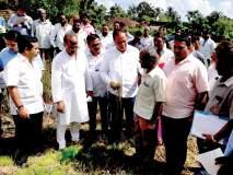 शेतकऱ्यांना तत्काळ नुकसान भरपाई, आशिष शेलार यांची ग्वाही