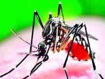 डेंग्यू प्रतिबंधात्मक जागृती